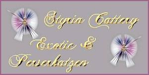 www.styriacattery.net