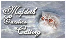 www.geocities.com/mafdeth