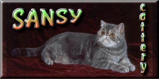 SANSY Banner